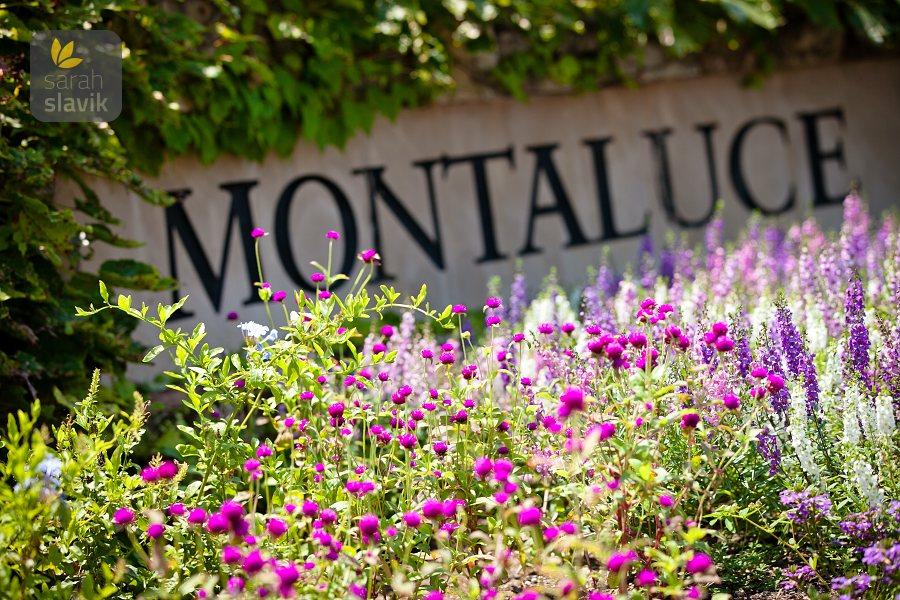 Montaluce sign
